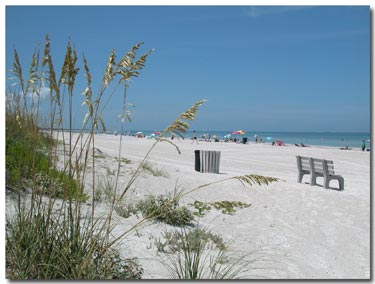 sea oats, white sand, and blue-green water on passagrille beach
