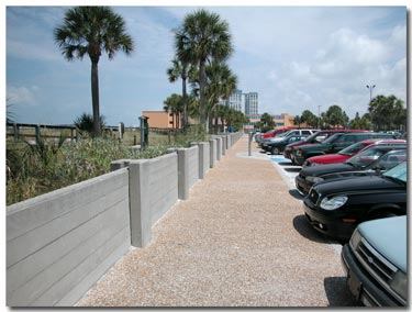 parking at st pete municipal beach.jpg