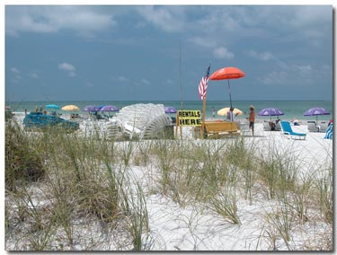 beach equipment rentals on st pete municipal beach.jpg